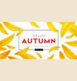 background for autumn season discounts vector image vector image