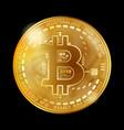 bitcoin coin gold vector image