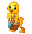 cartoon baby duck carrying little rabbit and eggs vector image vector image