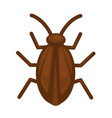cockroach in brown color isolated on white graphic vector image
