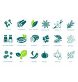 fragrant spices linear icons set seasonings with vector image vector image