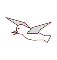 gull flying isolated icon vector image vector image