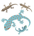 home lizard and gecko lizard in flat vector image