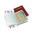 international passport with norway visa vector image vector image