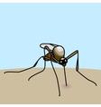 mosquito bite vector image