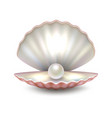 realistic beautiful natural open sea pearl vector image vector image