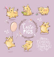 set cute tiny yellow pig in different poses vector image