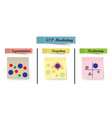 stp marketing diagram - process sticky notes vector image vector image
