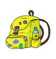 travel backpack vector image