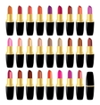 Set lipstick different colors object on white vector image