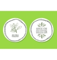 Ayurvedic Herb - Product Label with Arjuna vector image vector image