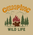 camping tourist campfire in woods design vector image