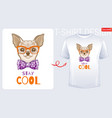 cute chihuahua dog t-shirt print design cool dog vector image