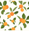 seamless pattern with orange mandarin vector image vector image