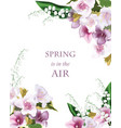 spring flowers bouquet card background beautiful vector image vector image