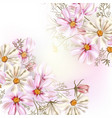 beautiful with field cosmos flowers vector image