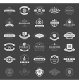 Retro Vintage Logotypes or insignias set vector image