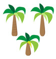 set of palm trees in simple flat style vector image