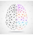 abstract geometric brain of hemisphere vector image