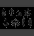 art chalk set of hand drawn leaves vector image vector image