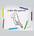children parrot coloring worksheet vector image vector image