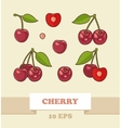 image of cherries vector image