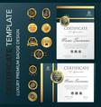 new template certificateprofessional certificate vector image vector image