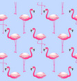 seamless pattern with flamingo exotic bird vector image