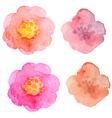 Set of watercolor flowers vector image
