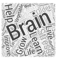 The Brain and Healthy Aging Word Cloud Concept vector image vector image