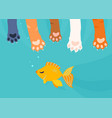 a lot of cat paws catch fishing gold fish under vector image