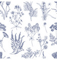 botanical seamless pattern with meadow herbs vector image