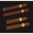 Burning cigars set vector image