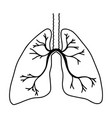 hand drawn lungs doodle style internal organs vector image