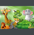 nature scene with wild animals cartoon vector image vector image