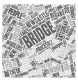 Newcastle s Beautiful Bridge text background vector image vector image