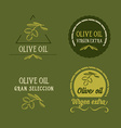 Olive oil design concept Great selection vector image vector image