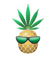 pineapple golden with green cannabis leaf vector image vector image