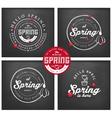 Spring Typography Background Set on Chalkboard vector image vector image