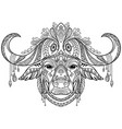 tangle african buffalo coloring book page for vector image