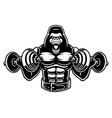 a gorilla bodybuilder with dumbbells vector image