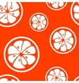 Abstract citrus fruit seamless pattern vector image vector image