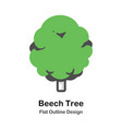beech tree outline flat vector image vector image