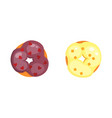 catoon donut with glaze vector image vector image