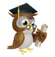 owl with degree or qualification vector image