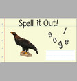spell english word eagle vector image