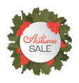 a wreath of viburnum and leaves advertising vector image vector image