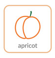 apricot icon orange peach outline flat sign vector image