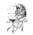 boho cat tattoo or t-shirt print design vector image vector image