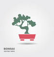 bonsai tree icon vector image vector image